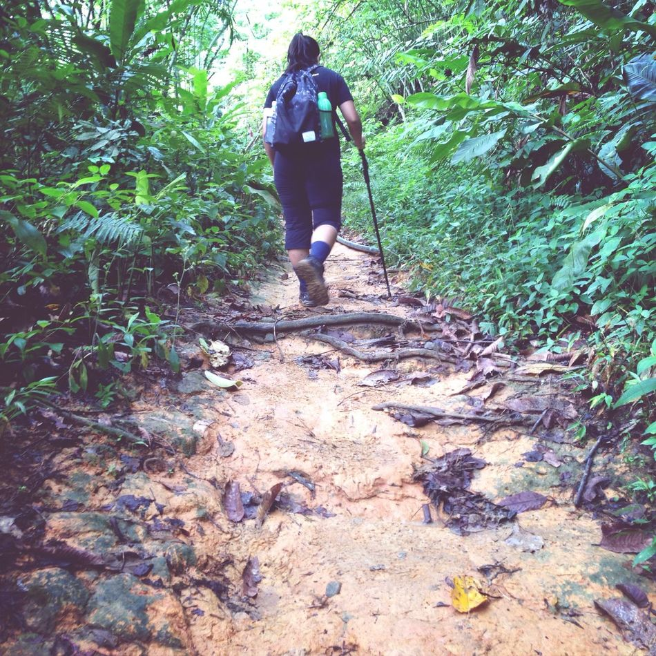 Beautiful stock photos of path, Adventure, Backpack, Day, Exploration
