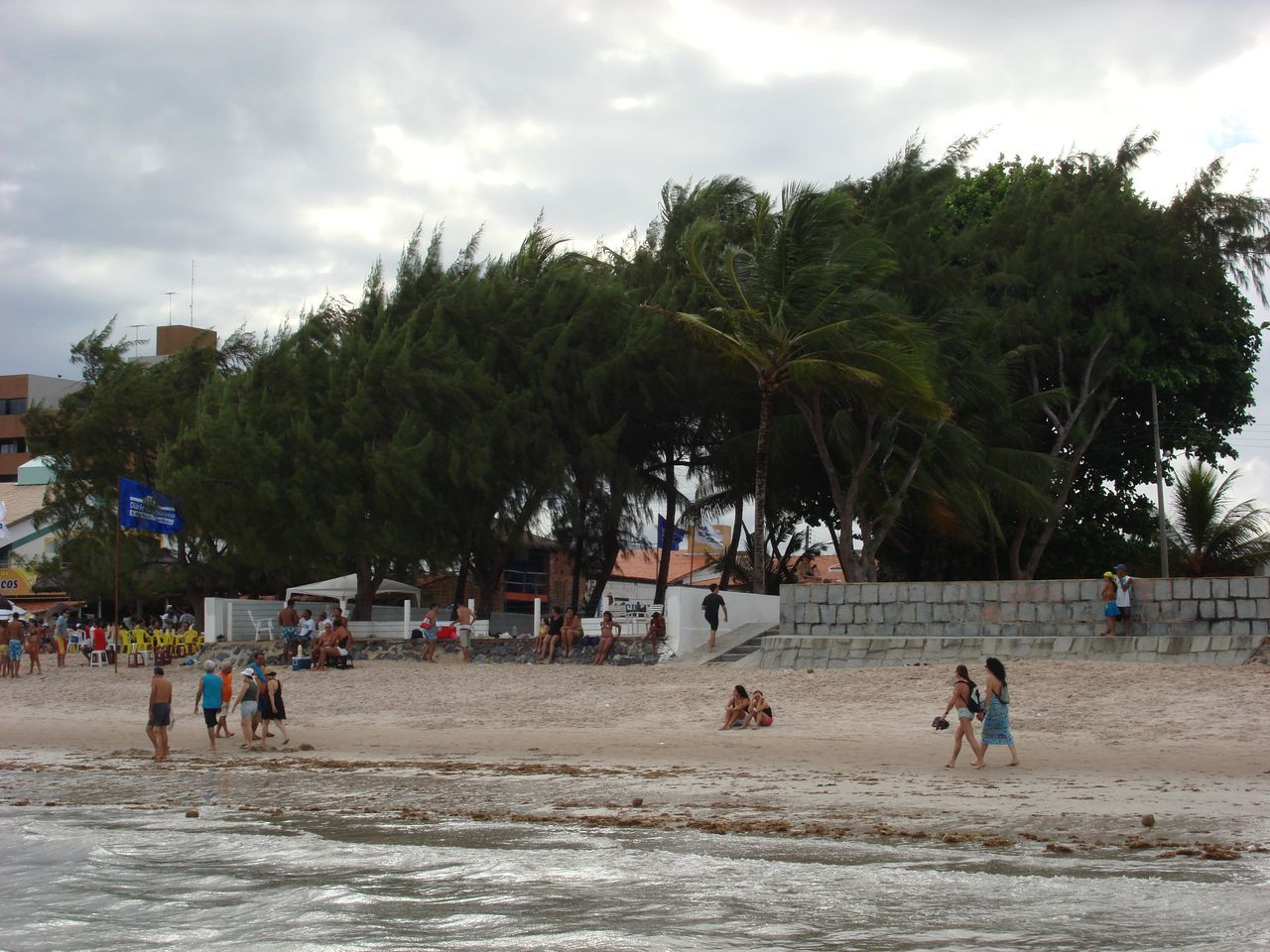 People At Beach By Trees Against Sky