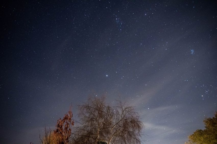 Night Sky Over Colehill Star - Space Night Astronomy Tree Low Angle View Beauty In Nature Nature Tranquility Sky Scenics Tranquil Scene No People Star Field Silhouette Outdoors Galaxy Starry Space Bare Tree Constellation Perspectives On Nature EyeEmNewHere
