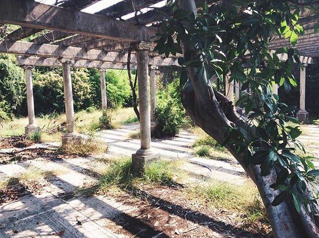Encanta Zihuatanejo Mexico Travel Abandonedplaces Ruins Vscotravel Travelthingstodo Travelprocinema