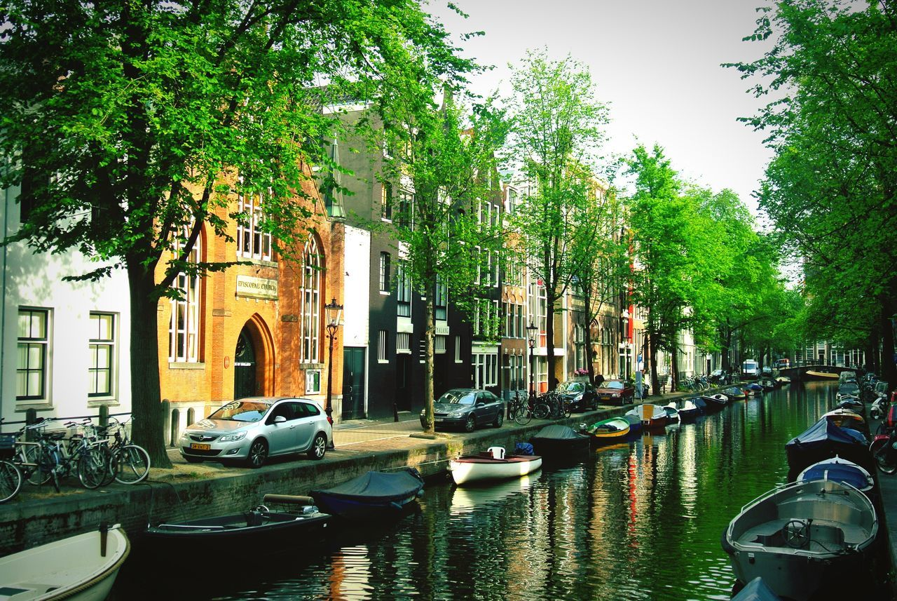 Beautiful stock photos of amsterdam, tree, travel destinations, gondola - traditional boat, nautical vessel