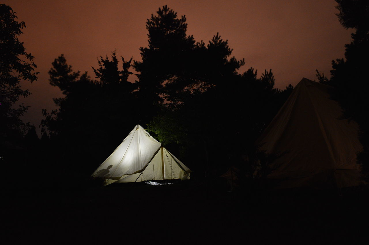 Alone forest human settlement life in nature light and shadow luminous Nature night outdoor tent Market Bestsellers July 2016 Bestsellers