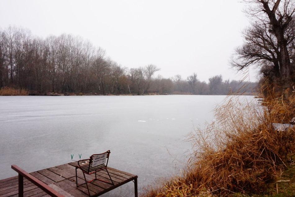 Lake Frozen Nature Photography Hungary Vac