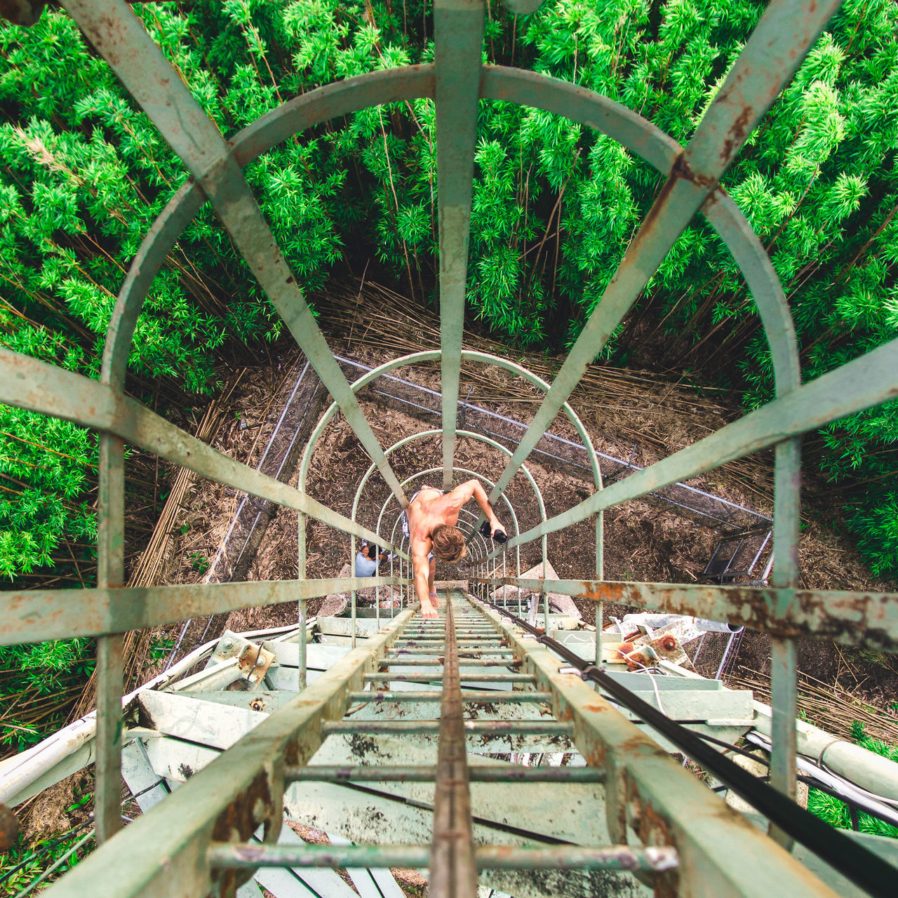 You have to look for the adventure. Adventure won't find you. Adventure Architecture Climbing Day Full Length Green High Angle View Ladder Leading Lines Leisure Activity Lifestyles Men Nature One Person Outdoors People Real People Rust Standing Tree Trees Water The Great Outdoors - 2017 EyeEm Awards