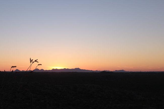 Amazing Arid Climate Arizona Beauty In Nature Blue Close Up Day Desert Desert Landscape Landscape Mountain Nature No People Ocotillo Orange Sky Outdoors Scenics Serenity Silhouette Sky Sonoran Desert Southwest  Spectacular Sunset Tranquility