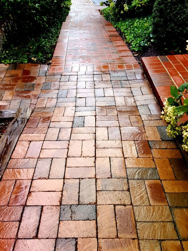 The Way Forward Footpath Paving Stone High Angle View Diminishing Perspective Day Plant Growth Park - Man Made Space Pedestrian Walkway Brick Outdoors Tranquility Nature Narrow Vanishing Point Green Color Formal Garden No People
