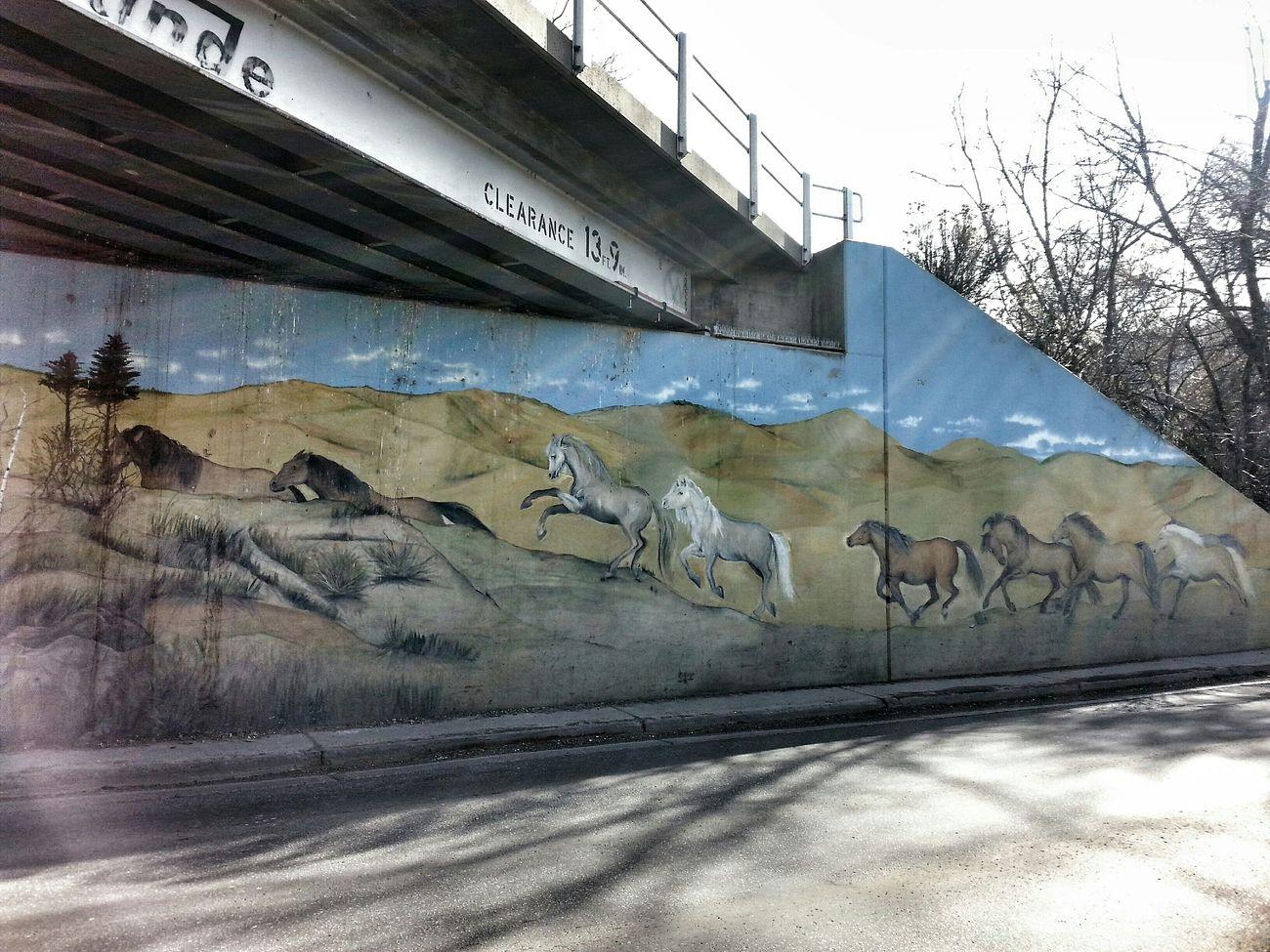 Under the tracks... Streetart Street Art I Love Horses