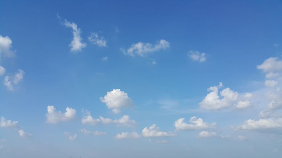 Blue sky and the scatter cloud. Backgrounds Beauty In Nature Blue Clear Cloud - Sky Cloudscape Day Heaven Idyllic Nature No People Outdoors Scatter Cloud Scenics Sky Sky Only Tranquility White Color