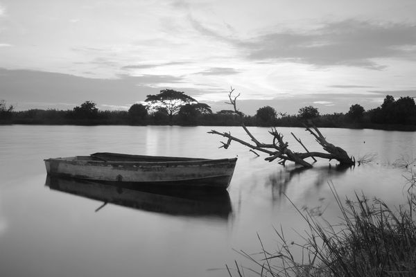 LS Beauty In Nature Black Bw Cloud - Sky Day Lake Mode Of Transport Moored Nature Nautical Vessel No People Outdoors Outrigger Reflection Rowboat Scenics Sky Tranquil Scene Tranquility Transportation Tree Water