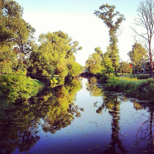 лепота Природа Russia река river отражение mirror sun