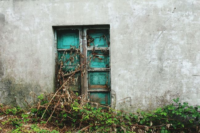 Window Architecture Built Structure Building Exterior House No People Green Color Damaged Outdoors Chillaxing Wall Weathered Day photography #photo #photos #pic #pics #tagsf orlikes #picture #pictures #snapshot #art #beautiful #instagood #picoftheday #photooftheday color all_shots exposure composition focus capture moment [ [ photography #photo #photos #pic #pics #tagsf orlikes #picture #pictures #snapshot #art #beautiful #instagood #picoftheday #photooftheday color all_shots exposure composition focus capture moment [ [