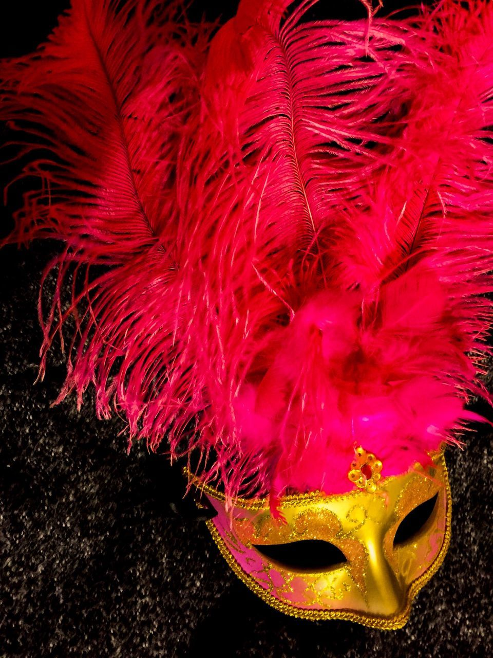 mask - disguise, eye mask, venetian mask, carnival - celebration event, costume, carnival, celebration, feather, party - social event, no people, indoors, disguise, close-up, day