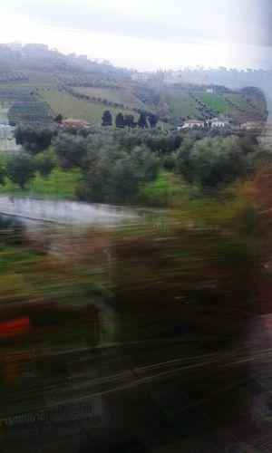 In viaggio Taking Photos Traveling Hello World Viaggiare Train Treno Verde Natura Nature Paesaggio