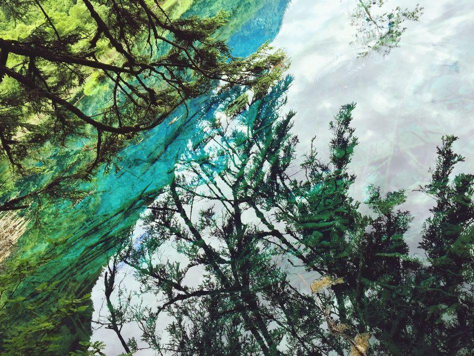 Nature On Your Doorstep beautiful in Jiuzhai Love Love