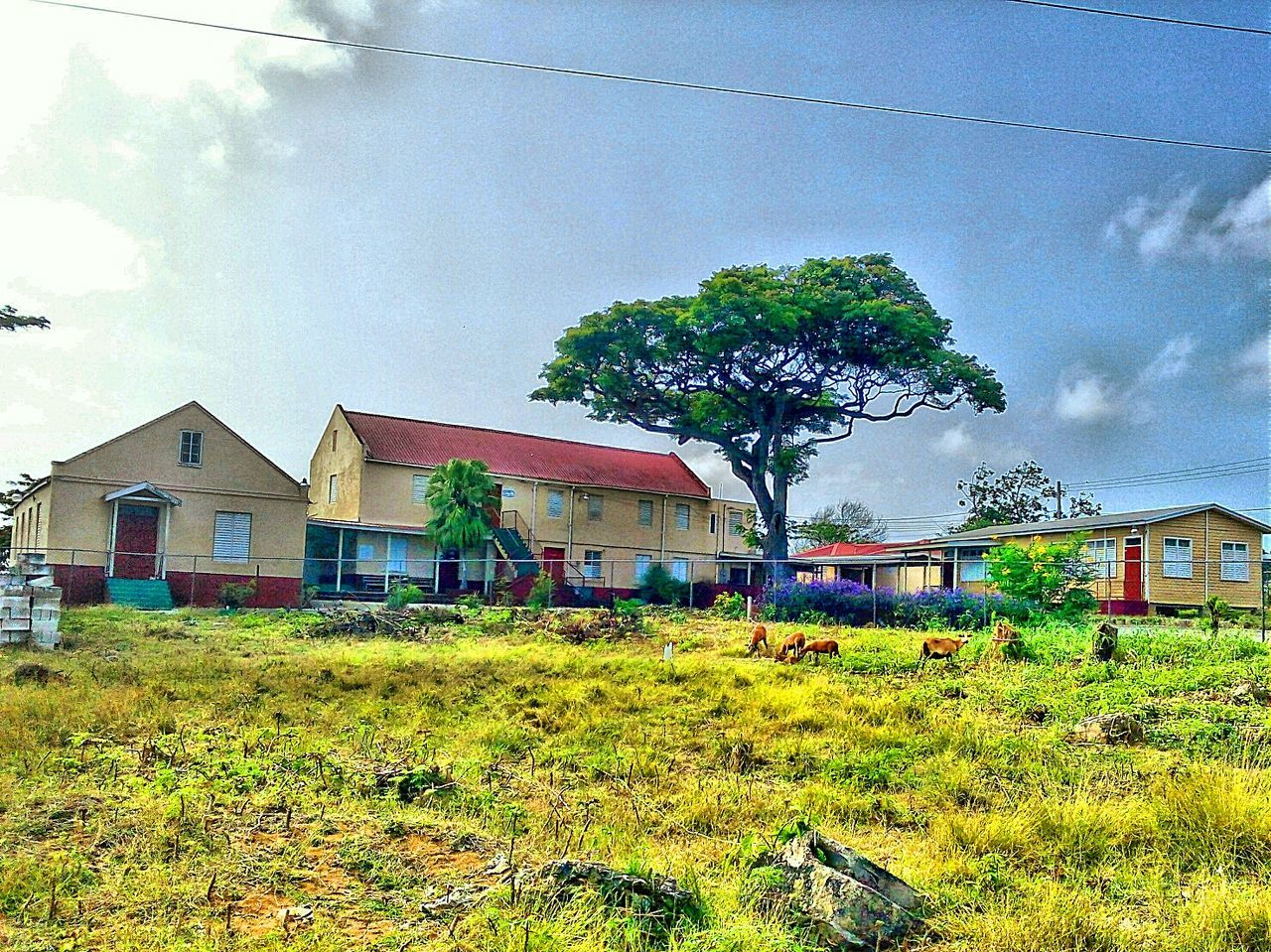 architecture, building exterior, built structure, house, sky, tree, outdoors, cloud - sky, no people, day, grass, residential building, nature