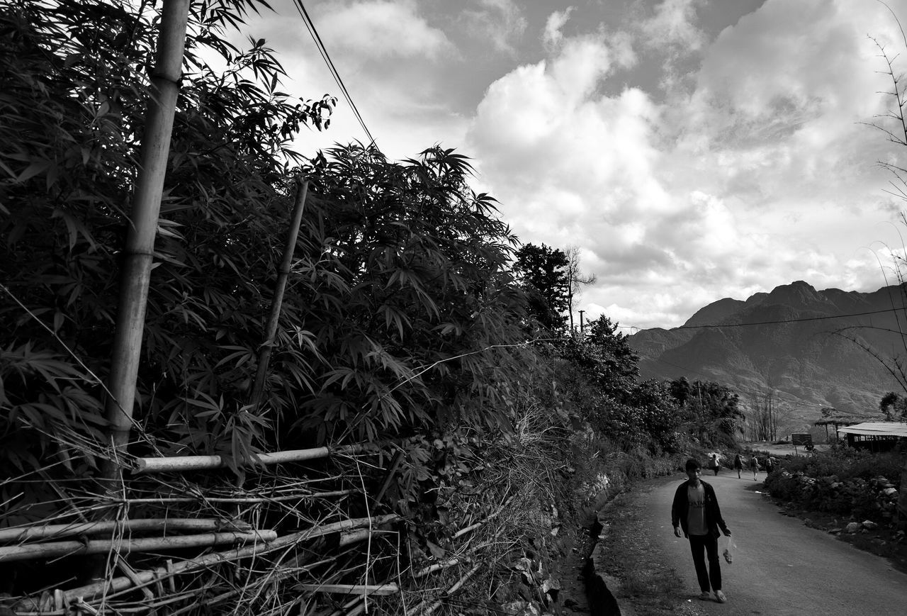 Weed Farm // Vietnam Cloud - Sky Outdoors Day Sky One Person Adults Only Men Real People Adult Tree People Nature Only Men One Man Only Weed EyeEm Best Shots High Contrast Bw Bws_worldwide BW Collection Fragility Vietnam Travel Farm