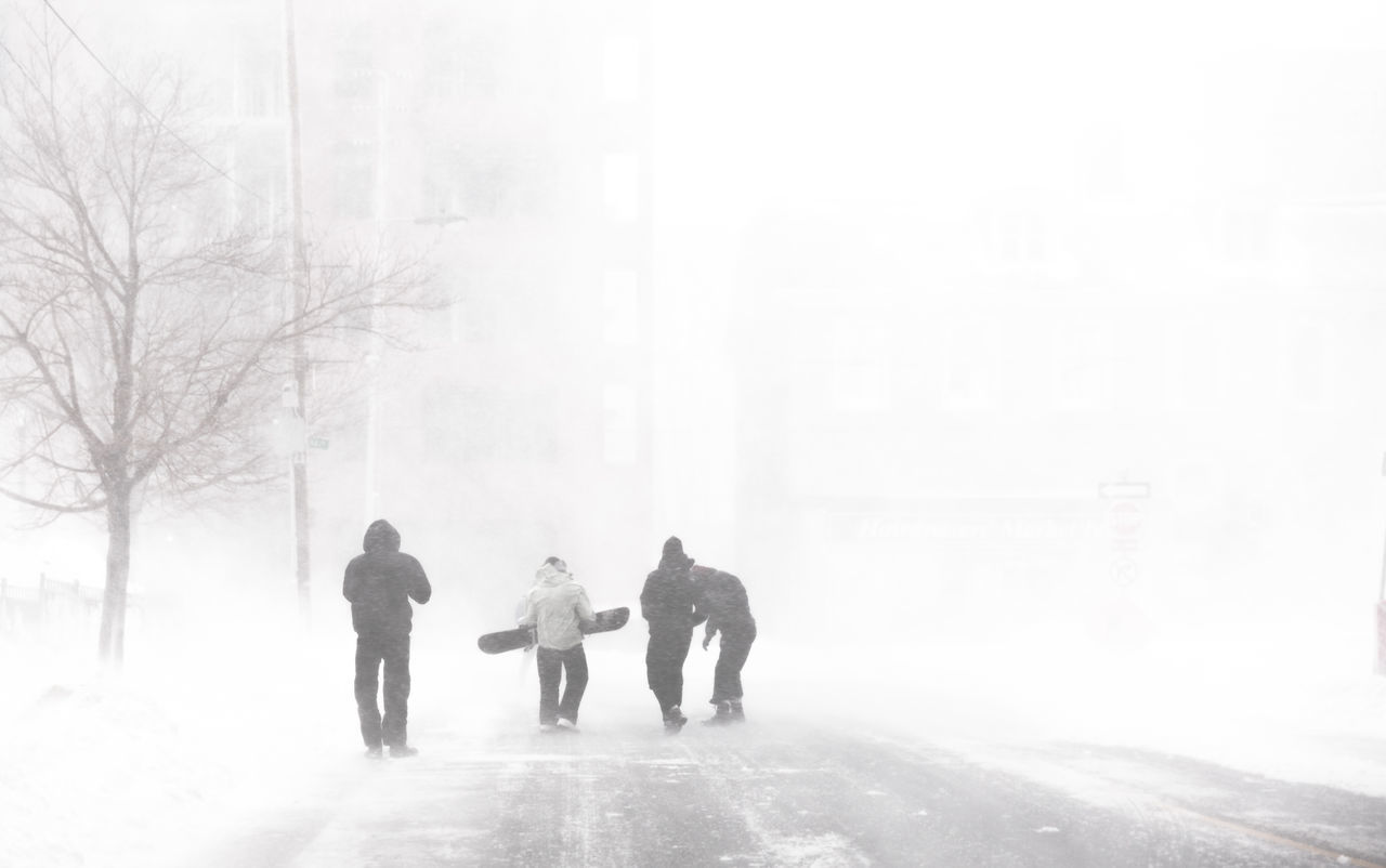 So where do you think are these guys heading in Halifax??? Adult Army Backgrounds Blizzard City Cold Temperature Day Full Length Low Temperature Outdoors People Snow Snow ❄ Snowboard Snowing Stormy Weather Street Streetphotography Urban Urban Snowboarding Walking Warm Clothing We White Out Winter