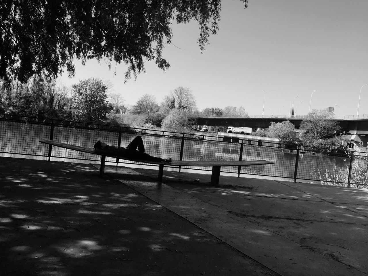 water, tree, railing, river, real people, built structure, day, outdoors, clear sky, sky, architecture, nature, men, skateboard park, people