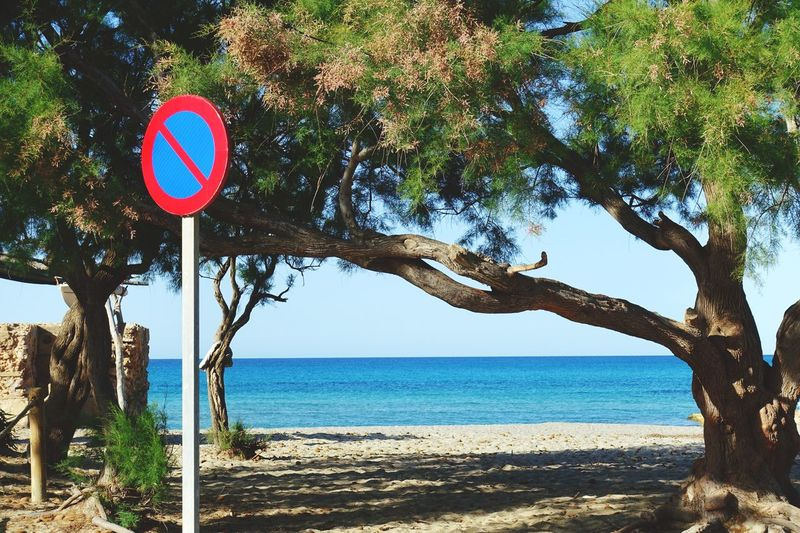 Krull&Krull Images Mallorca Tree Nature Beauty In Nature Outdoors Day Road Sign Communication No People Sea Scenics Branch Tranquility Water Clear Sky Sky Beach Mallorca Son Serra De Marina Ocean Blue The Great Outdoors - 2017 EyeEm Awards Live For The Story