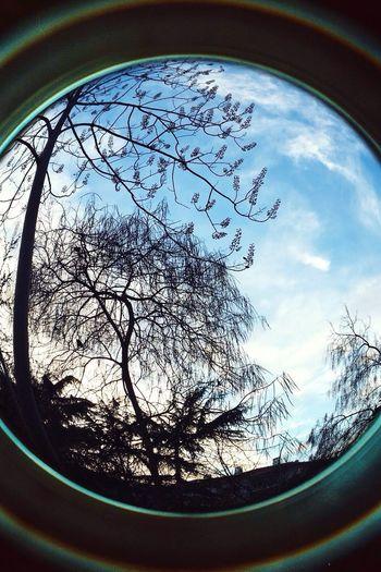 Hanging Out Hello World Enjoying Life Taking Photos Relaxing Sky