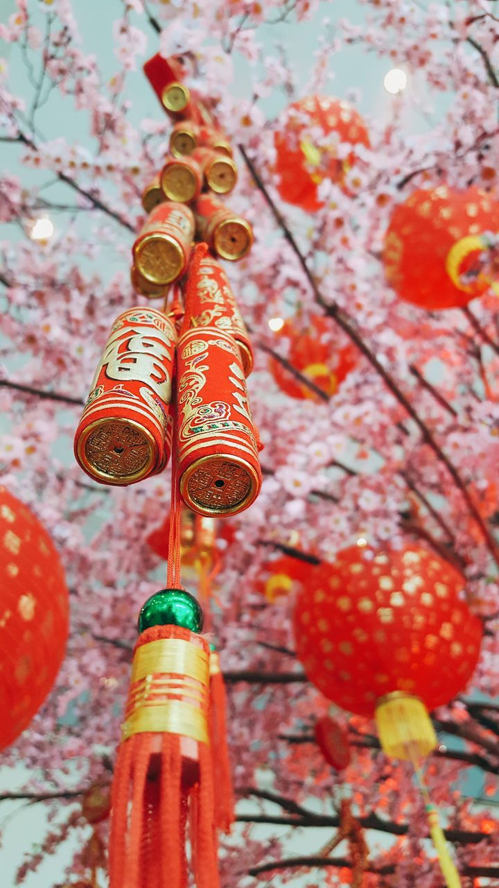 hanging, low angle view, lantern, no people, cultures, chinese lantern, red, day, outdoors, close-up, chinese new year, tree