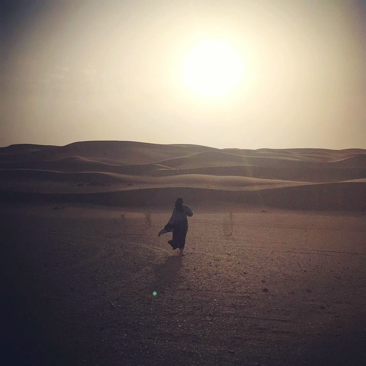 nature, landscape, sun, tranquil scene, sand, sunset, scenics, outdoors, beauty in nature, desert, real people, one person, sky, full length, sunlight, one animal, silhouette, tranquility, sand dune, domestic animals, mountain, animal themes, arid climate, mammal, clear sky, day, water, pets, people