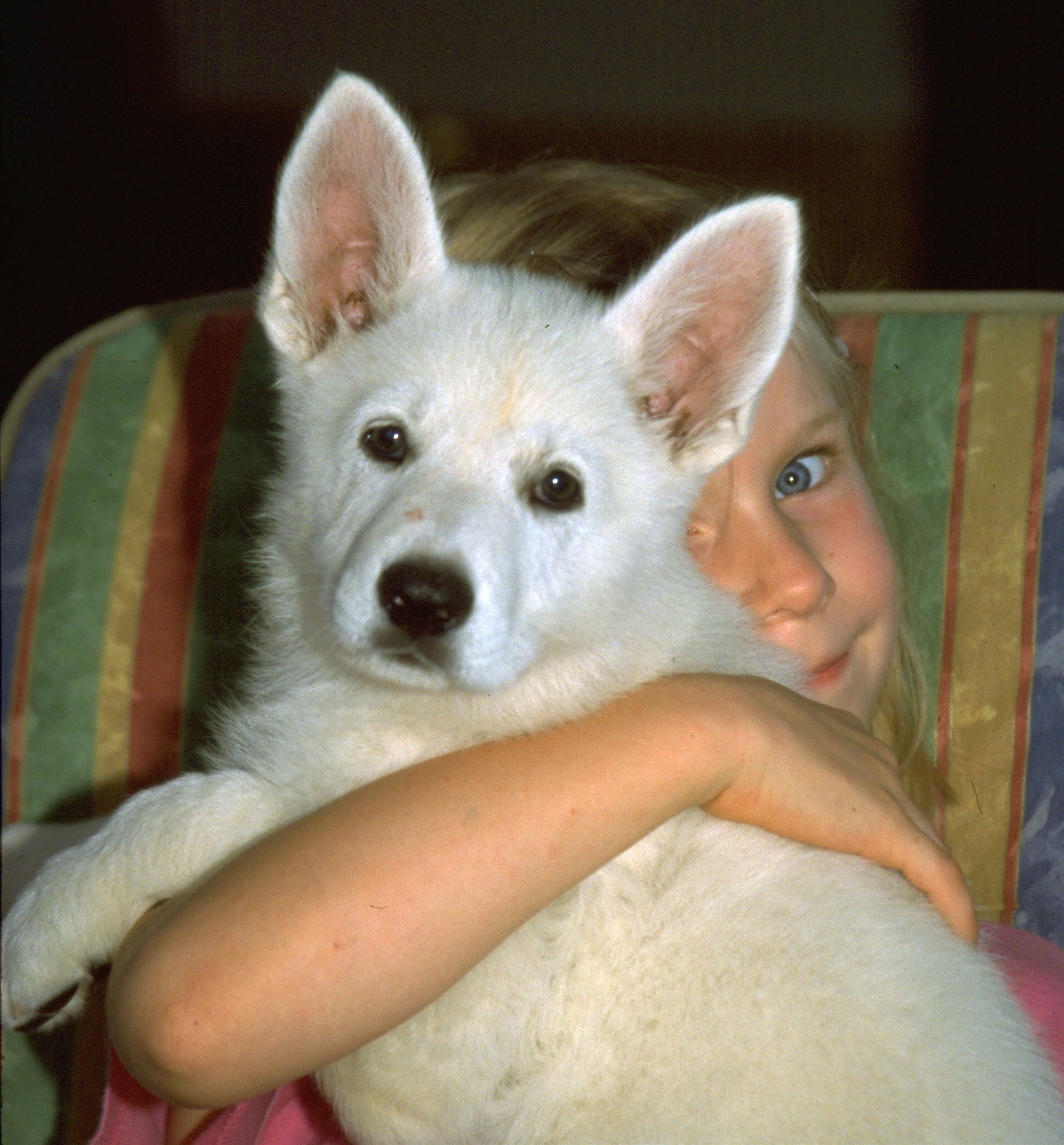 Close-Up Of Girl Holding Dog And Sitting At Home