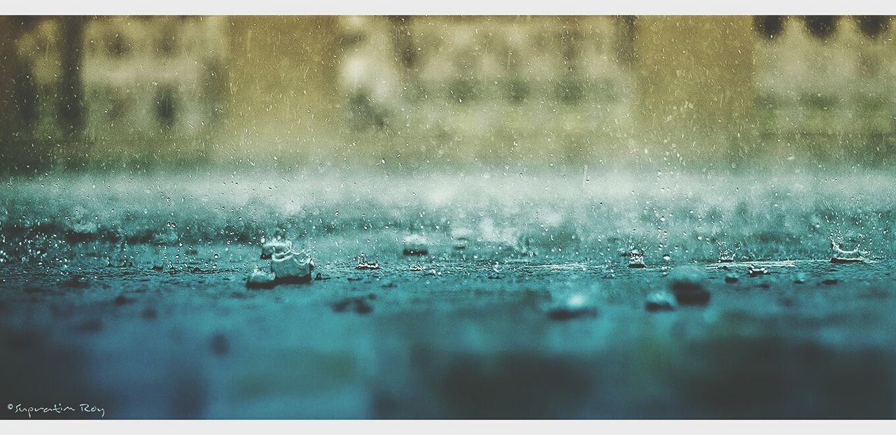 rain, water, rainy season, no people, raindrop, wet, drop, day, weather, surface level, selective focus, close-up, outdoors, nature, backgrounds
