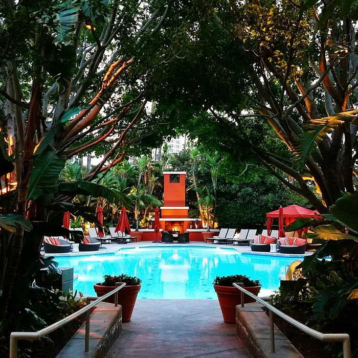 Travel Destinations Pool Water Fire Fireplace No People Tree Red Vacation Newport Beach California Newps