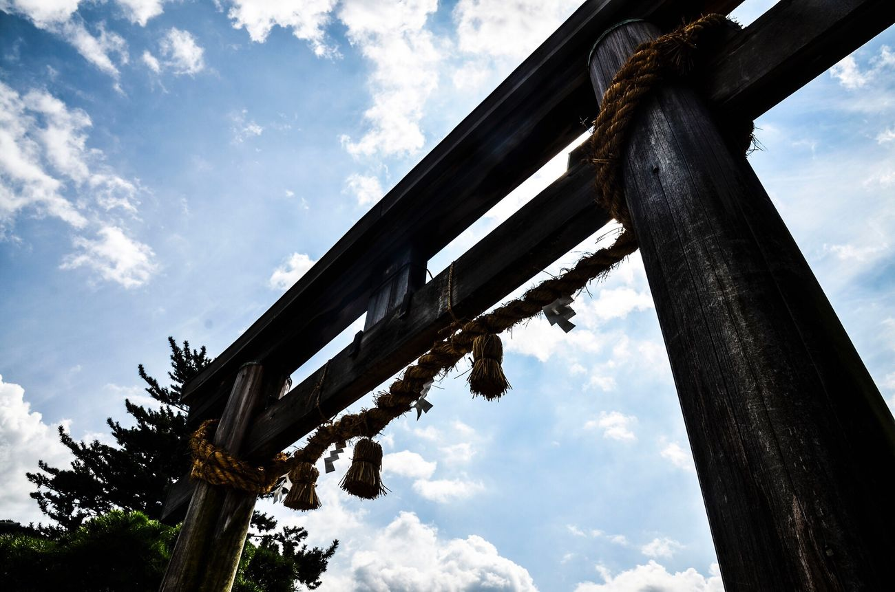 Sky Low Angle View Cloud - Sky Wood - Material No People Day Outdoors Built Structure Tree Architecture Nature Nikon D7000 Torii Gates