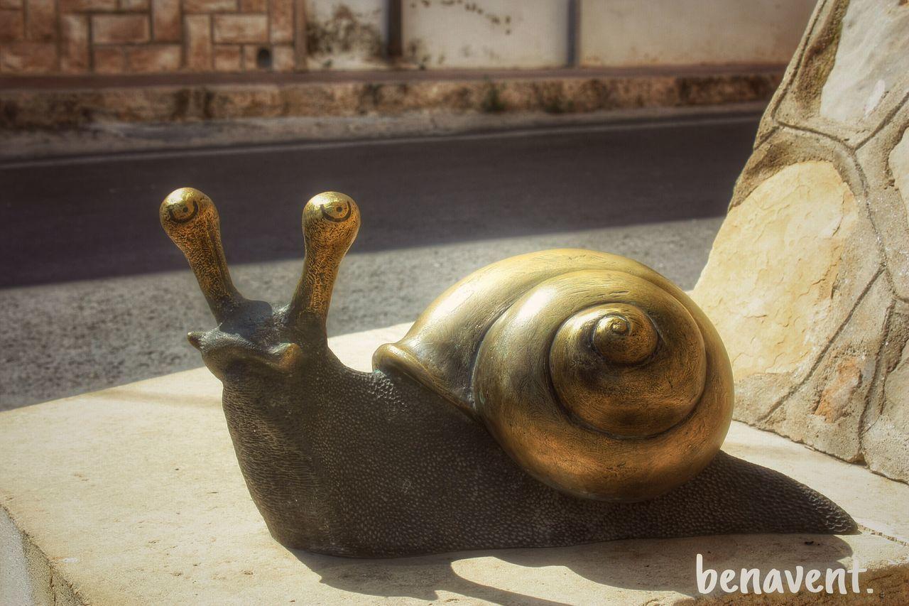 Caragol Cargol Caracol Art Urban Carricola Vall D'Albaida País De L'olivera