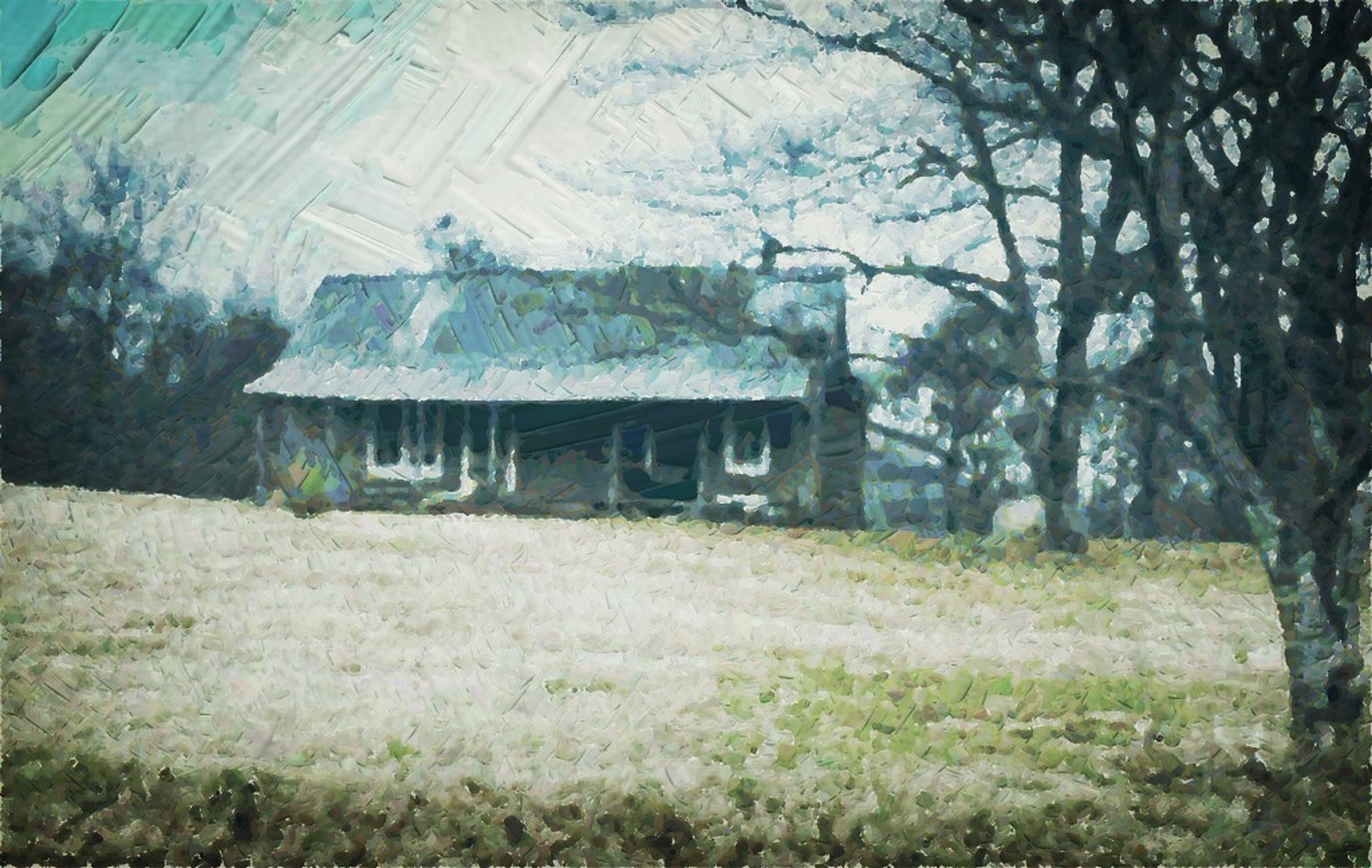 field, tree, grass, growth, abandoned, built structure, nature, tranquility, landscape, architecture, plant, grassy, house, day, tranquil scene, building exterior, no people, rural scene, outdoors, damaged