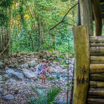 Ig_grenada PureGrenada Livefunner Uncoveryours Westindies_landscape Ig_caribbean Amazingphotohunter Andyjohnsonphotography ChasingWaterfalls Artnetinstagram Natureaddictsun Bush Theblueislands Ilivewhereyouvacation Bushments