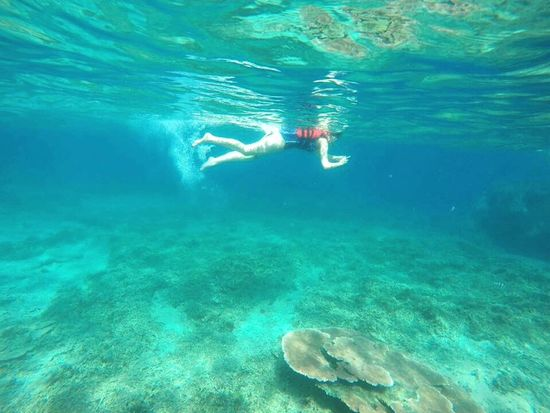 Enjoying Life Taking Photos EyeEm Best Shots Malaysia Photography Mobilephotography Traveling Snorkeling Underwater