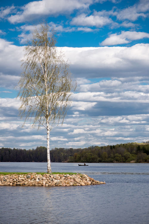 Beauty In Nature Birch Branch Cloud - Sky Day Jetty Lake Landscape Landscape_Collection Lone Nature No People Outdoors River Riverside Scenics Sky Spring Springtime Stones Tranquil Scene Tranquility Tree View Water