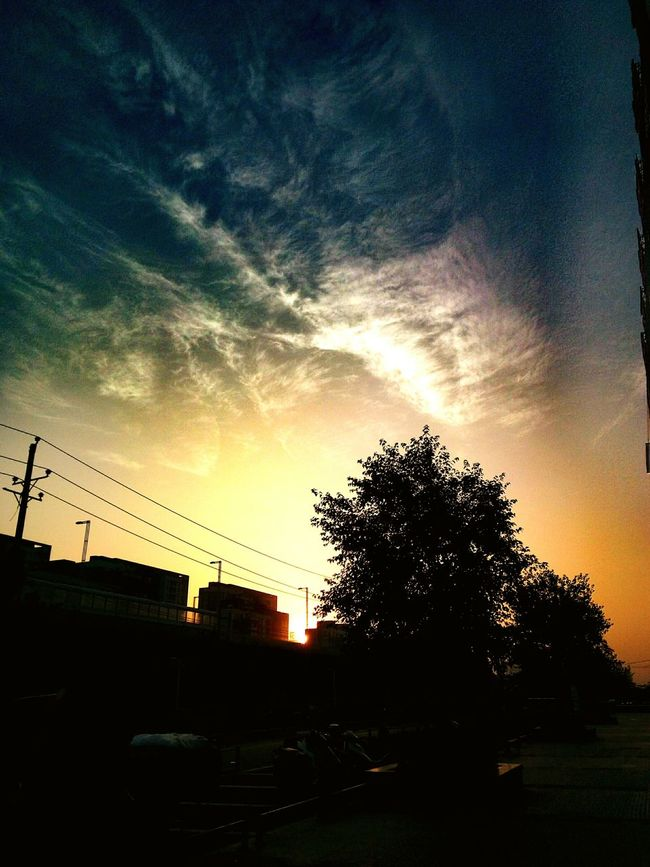 Pic Love ♥ EyeEm Of The Week Morning Sky Skylovers Morningsky Sunshine ☀ Morning View Summer ☀ PassingBy Sky And Trees Morning Sun Morning Sunrise Taking Photos Morning Sky And Clouds Secenery Nature Makes Me Smile Nature Sun ☀ Sunnyday Fresh On Eyeem  Sky Nature_collection Summertime