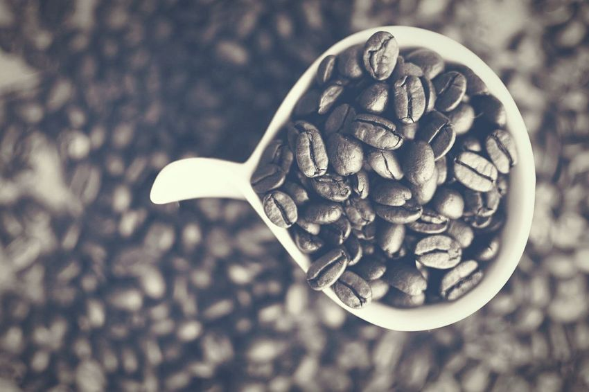 Coffee Coffeetime Focus On Foreground Extreme Close-up Nature Day Outdoors Freshness No People Creativity EyeEm Best Shots EyeEm Gallery EyeEmbestshots Eyemphotography Coffeebean Kaffeekultur