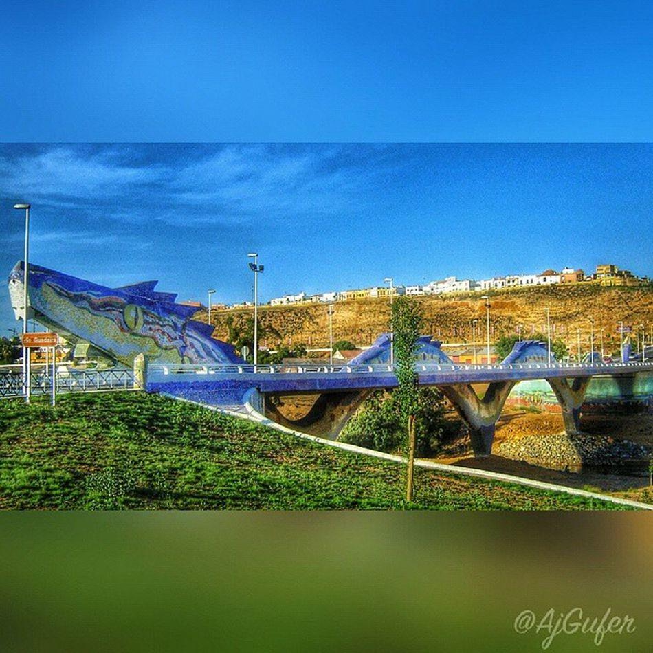 El Puente del Dragón Loves_bridges Total_bridges Loves_sevilla Ok_sevilla Estaes_sevilla  Todoclick Collection_andalucia Descubriendoigers Best2gram Travelmag_hdr Ig_great_pics_bridges Every_bridge Ig_shotz_bridges Bridges Andaluciaviva