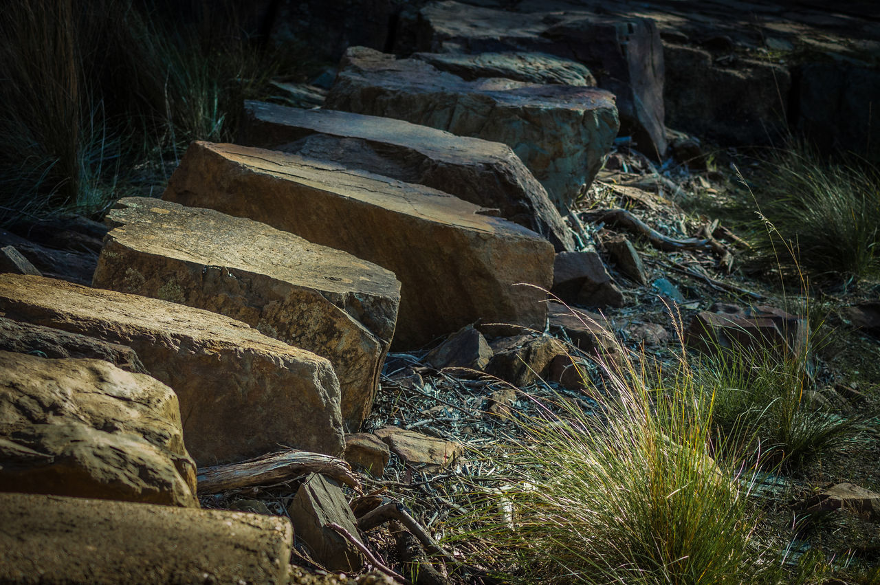 stepping stones Australian Bush Beauty In Nature Bushwalking Day Nature No People Outdoors Path River Bed Rocks Shadows & Light Stepping Stones Travel Destinations