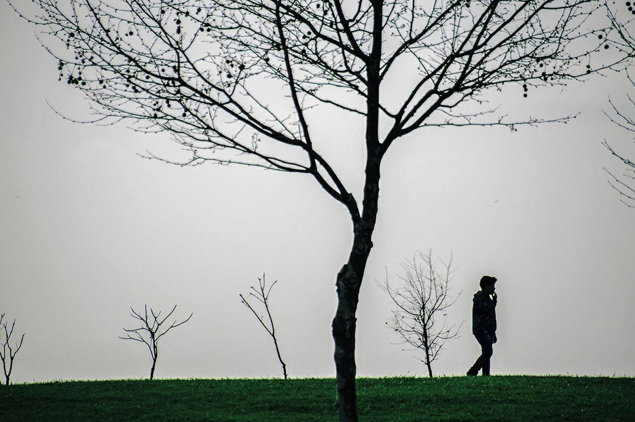 Tree Landscape Silhouette Fog Nature Beauty In Nature Day Branch Grass Outdoors People Streetdreamsmag Outdoors Life Istanbulstreetphotography Check This Out Street Life Istanbul City Streetphotography