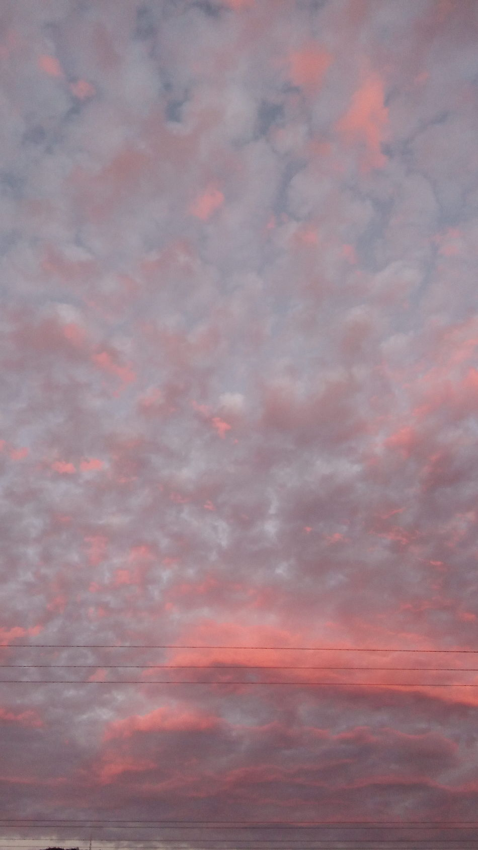 Red Clouds and powerlines,just past sunset. Red Pink Color Backgrounds No People Multi Colored Sunset Nature Sky Abstract Outdoors Water Beauty In Nature Day Powerlinesaresoscenic sunset #sun #clouds #skylovers #sky #nature #beautifulinnature #naturalbeauty photography landscape