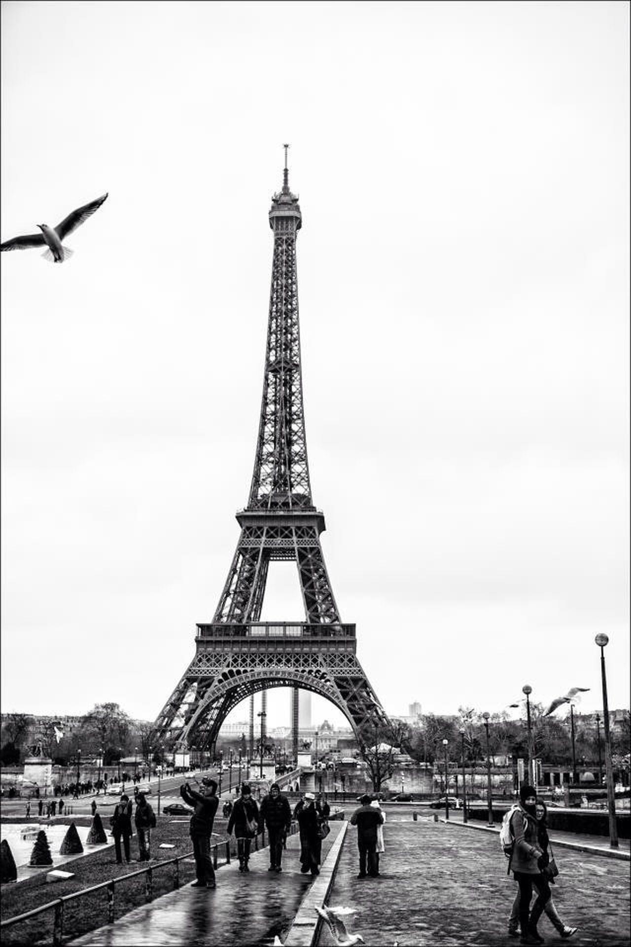 Beautiful stock photos of eiffel tower, Activity, Arch, Architecture, Branch