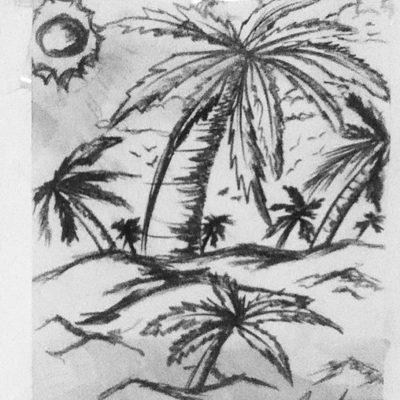 Montana Palm Beach Sombre Sun Black And White Birds Charcoal Drawing Landscape Natural Green Palms Depth Brightness Goo Love Like Like4like Instalike Instagood Instafollow Follow art