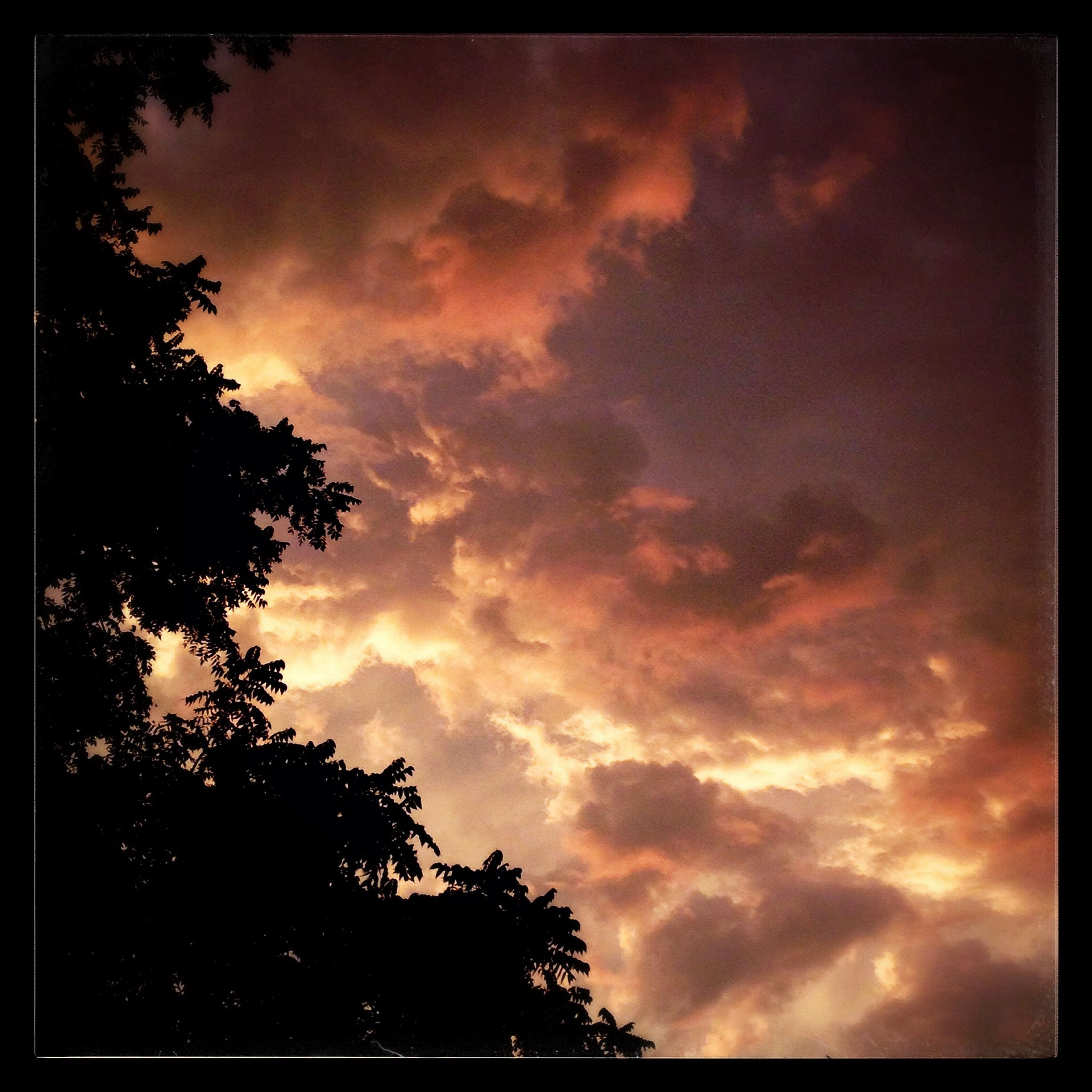 sky, transfer print, tree, cloud - sky, silhouette, sunset, cloudy, beauty in nature, low angle view, auto post production filter, tranquility, scenics, tranquil scene, cloud, nature, dramatic sky, overcast, weather, dusk, idyllic