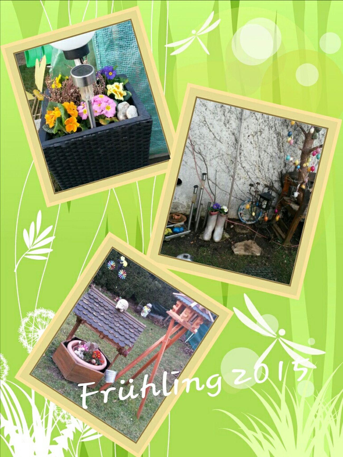 Frühling ist es 😂 Relaxing Hello World