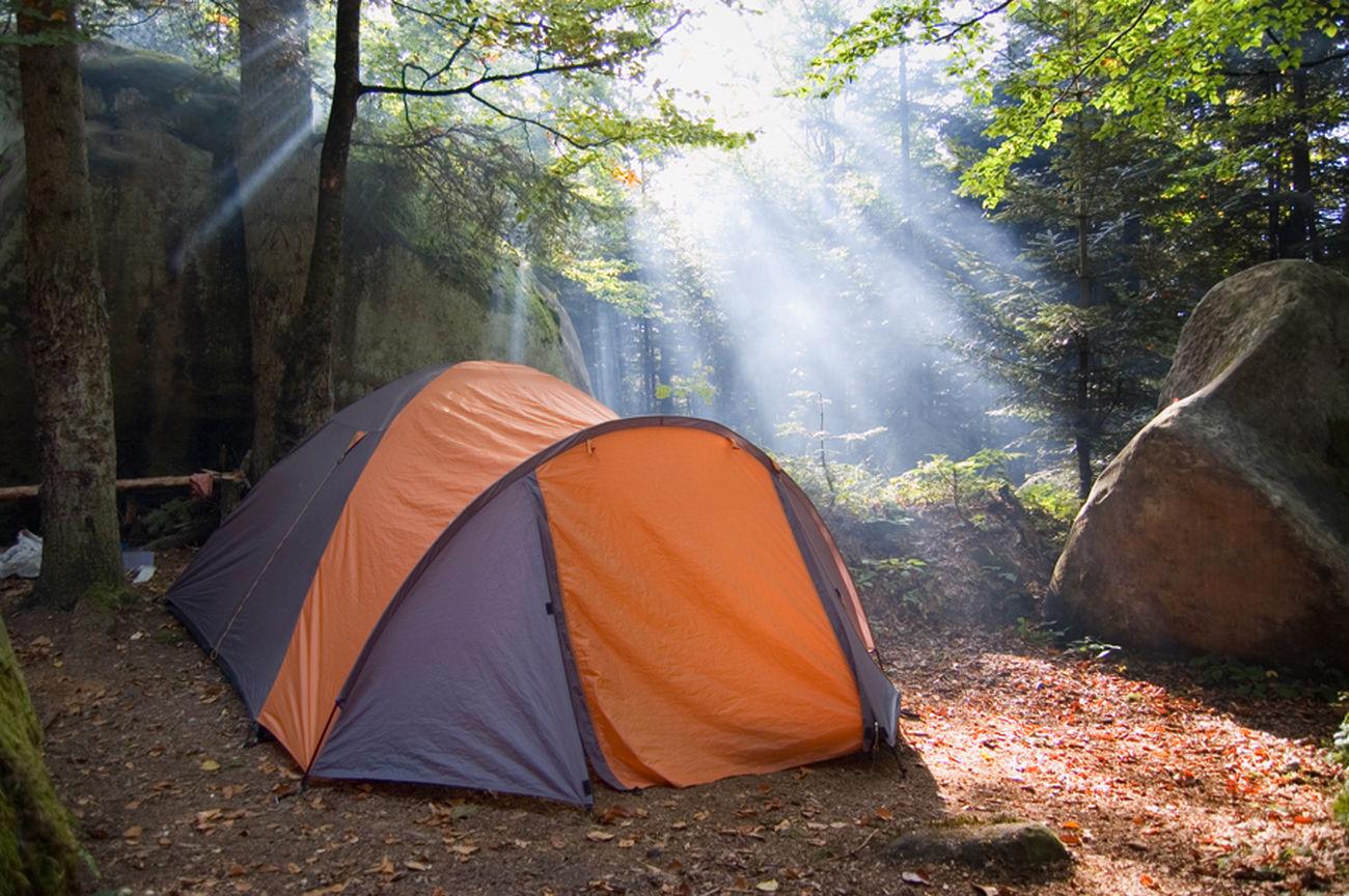 Karpathian Good_morning Good Morning