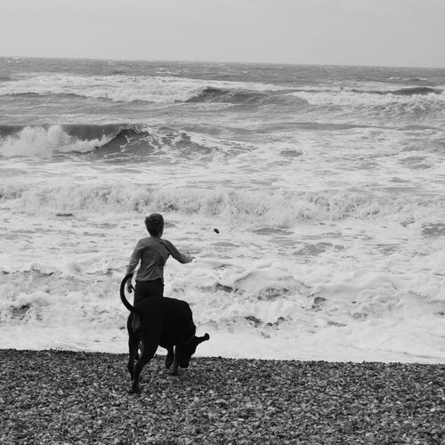 Enjoying Life Black And White Photography Black And White Childhood Children's Portraits A Boy And His Dog Seaside British Coastline Milton-on-sea Beach Photography Choppy Waters Days Out Coastline Landscape Nikon D3200