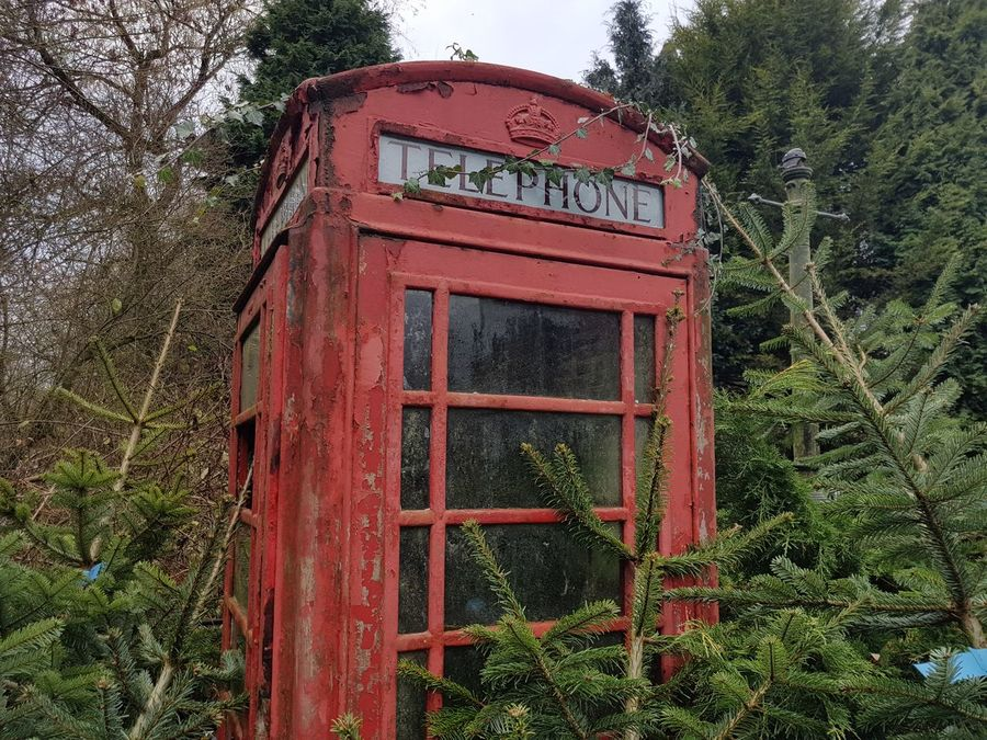 EyeEmNewHere Telephone Booth Red Communication Tree Outdoors Day Pay Phone No People Grass Nature