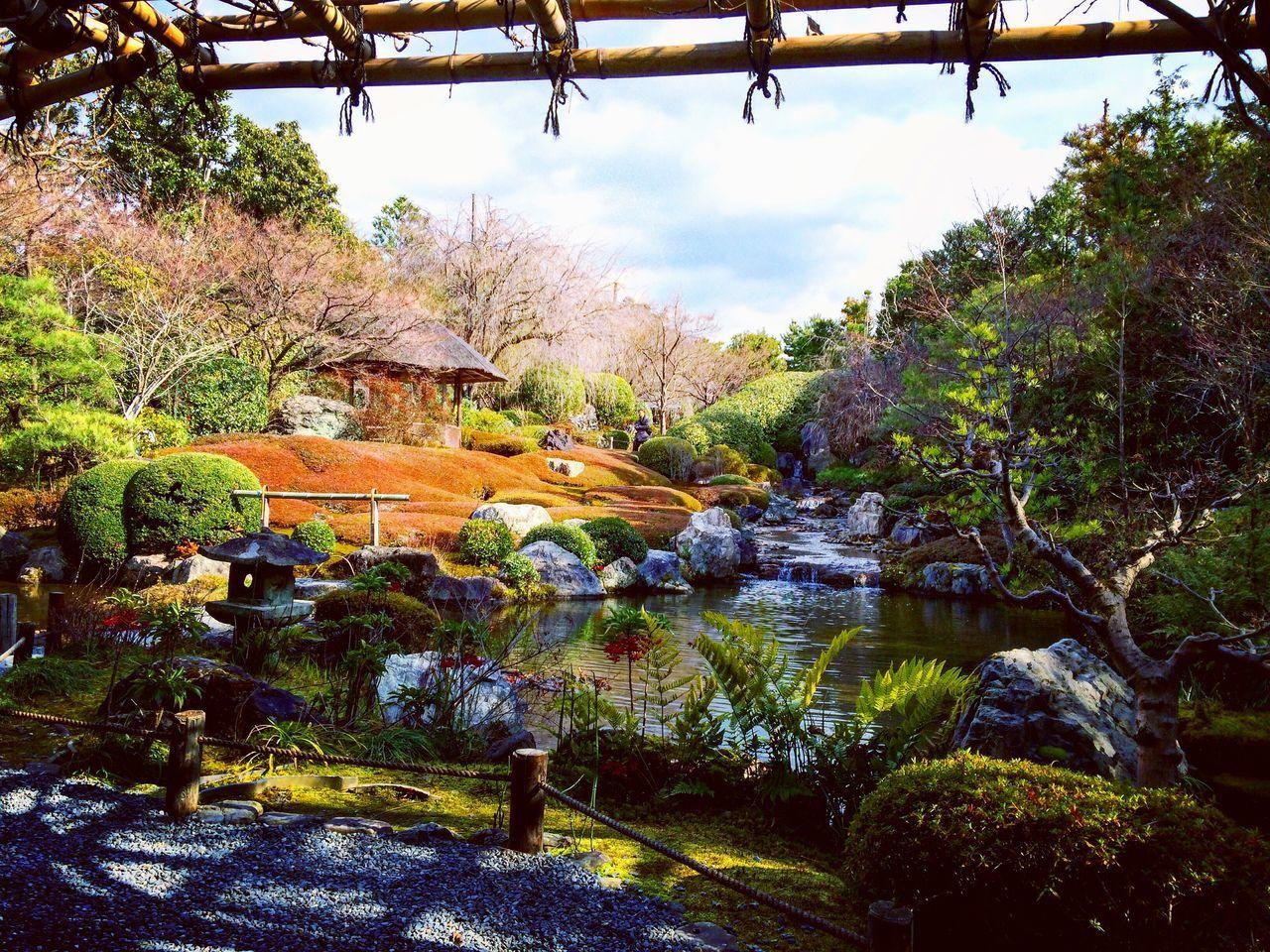 妙心寺 退蔵院 余香苑 Relaxing Kyoto 京都 庭園 寺社仏閣
