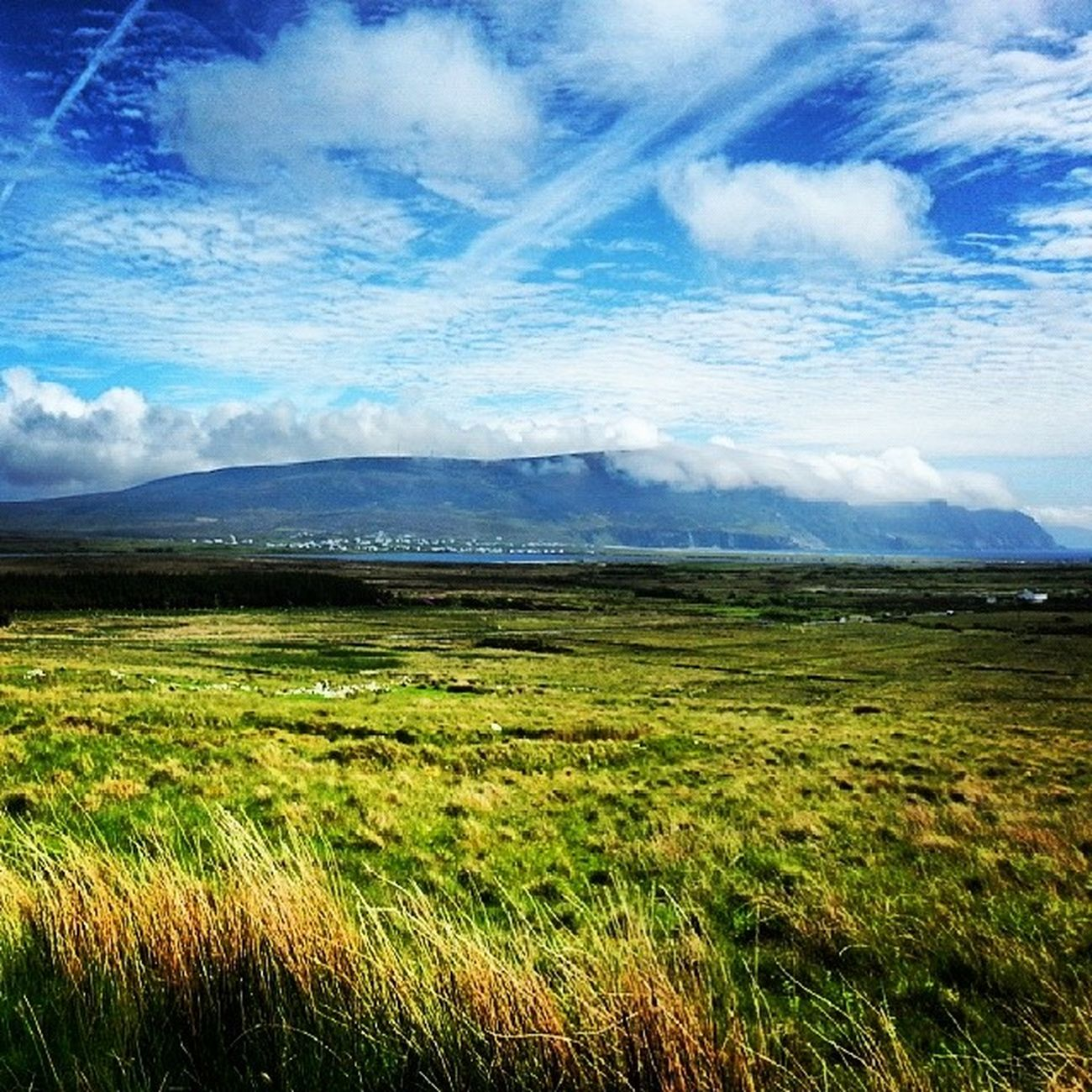 Tranquility Achill Countryside Beautiful Beach Desertedvillageachill Wildlife Scenery Nature History Irishcountryside Ireland Recharge Countrywalks Tranquillity WestOfIreland Outdoors Blueskies Perfectday